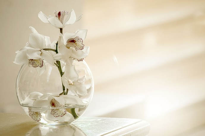 Picture of Orchid's in a vase